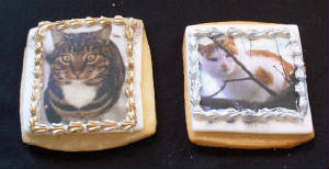 kitty_cookies_2.jpg